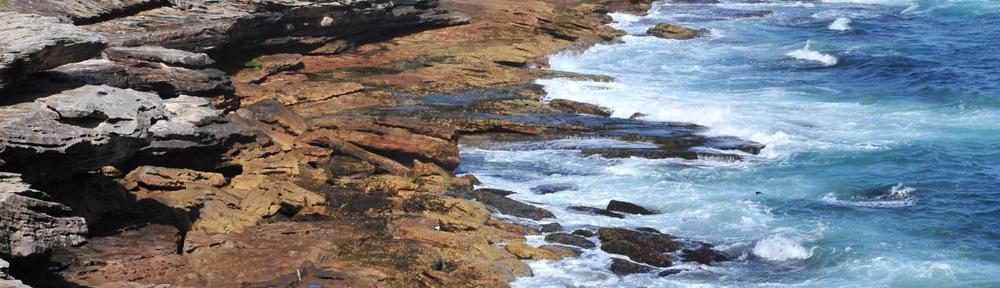 REMAX Orange Beach